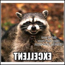 "Fridge Fun Refrigerator Magnet ""EXCELLENT"" Plotting Raccoon"